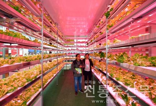 제26회 중국양링농업첨단기술박람회, 이달 22일 개최.jpg
